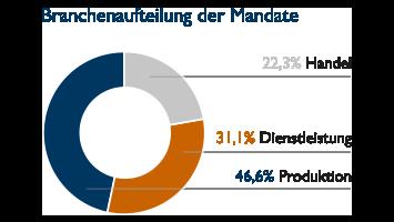 Branchenaufteilung der Mandate